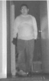 Mountain View Burglary Suspect