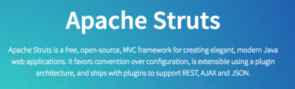 Apache Struts Project Description